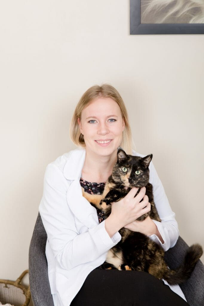 Veterinarian holding onto a black cat